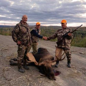 maine moose hunting